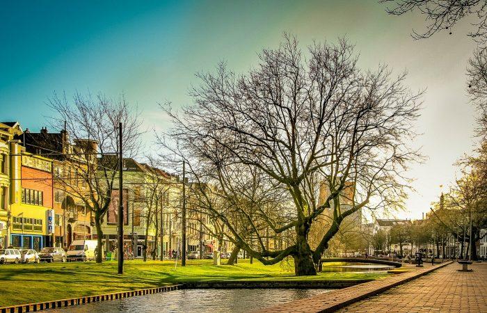 Rotterdam Westersingel - Omgevingswet